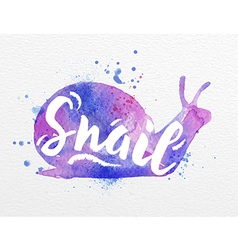 Painted animals snail vector