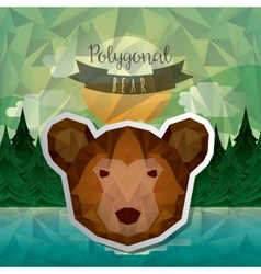 Bear low poly vector