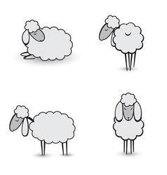 gray sheeps vector image vector image