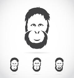 image of orangutan face vector image