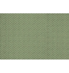 Distress Green Wallpaper vector image