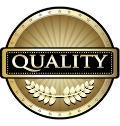 quality gold icon vector image