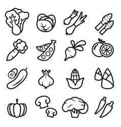 Vegetable icon vector