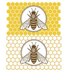 honey bee set vector image vector image