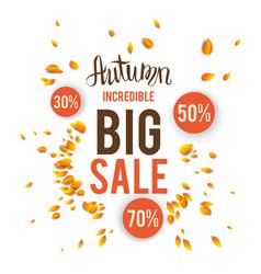 Autumn sale card vector