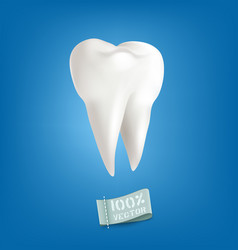Lliustration with realistic tooth isolated on vector
