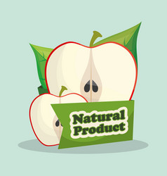 Apple natural product market design vector