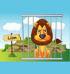 Cartoon Zoo Lion vector image vector image