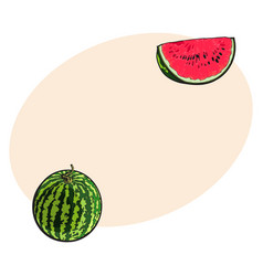 whole watermelon and red slice with black seeds vector image