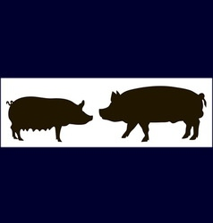 Silhouette of pigs vector