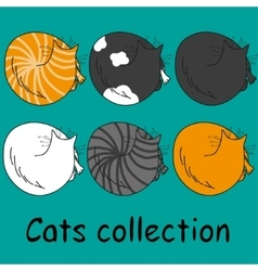 Set of six funny cats isolated on turquoise vector