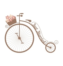 Wedding bicycle with basket of pink flowers vector