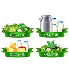 Various types of organic food vector