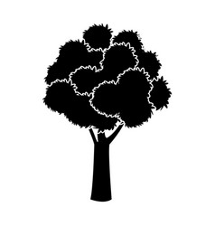 Black tree silhouette foliage branch ecology image vector