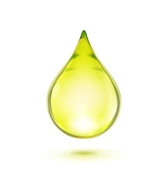 oil drop vector image vector image