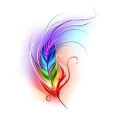 Rainbow feather on white background vector