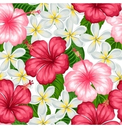 Seamless pattern with tropical flowers hibiscus vector image