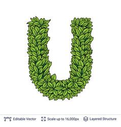 Letter u symbol of green leaves vector