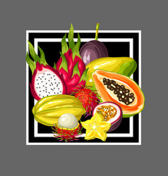 print with exotic tropical fruits of vector image vector image