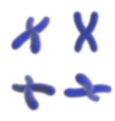 Science template wallpaper vector image
