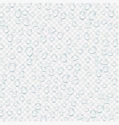 Realistic transparent water drops vector