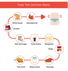 Foods that contribute to obesity foods that vector