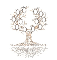 Graphic genealogical branchy tree vector
