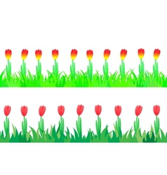 Set of seamless the tulips in the grass vector image vector image