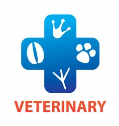 veterinary vector image