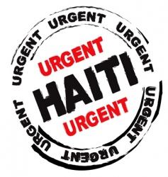 Haiti danger vector image