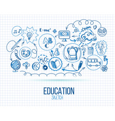 School education infographic vector
