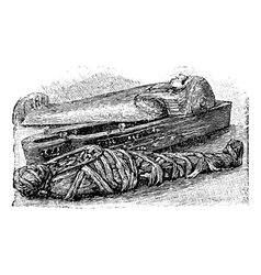 Egyptian mummy vintage engraving vector