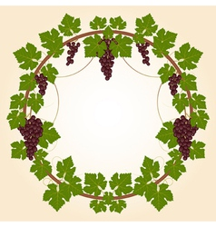 Grape round frame vector image vector image