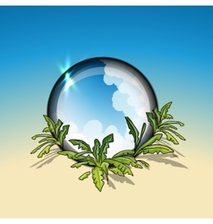 Tropical circle frame vector image vector image
