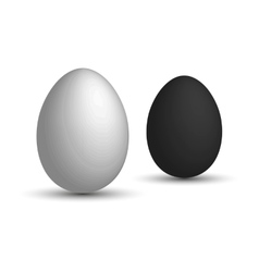 Set a realistic 3d eggs white egg and black egg vector