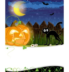 Jack o lantern and black cat vector