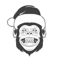 Monkey with santa hat vector image