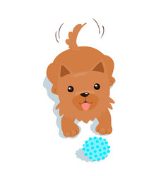 Happy yorkshire terrier dog and a ball vector