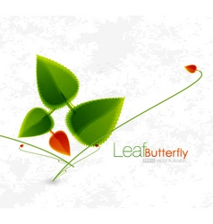 leaf butterfly vector image vector image