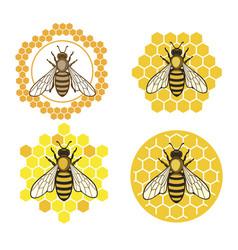 Honey bee set vector