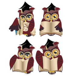 Brown wise owl3 vector