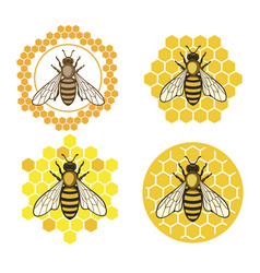 Honey bee set vector