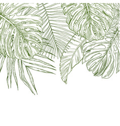 top border composed of tropical leaves vector image
