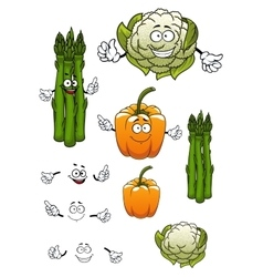 Cartoon asparagus cauliflower and bell pepper vector