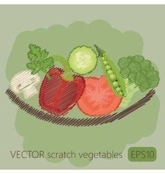 Vegetables in plate scratch vector