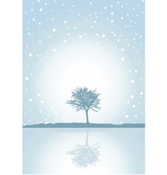 winter reflections vector image