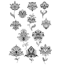 Persian and indian paisley flowers vector image