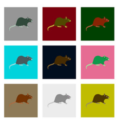 Set of in flat style rat vector
