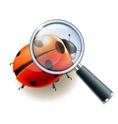 Magnifying glass and ladybird vector