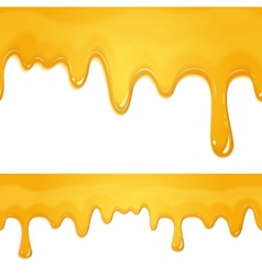honey drips pattern vector image
